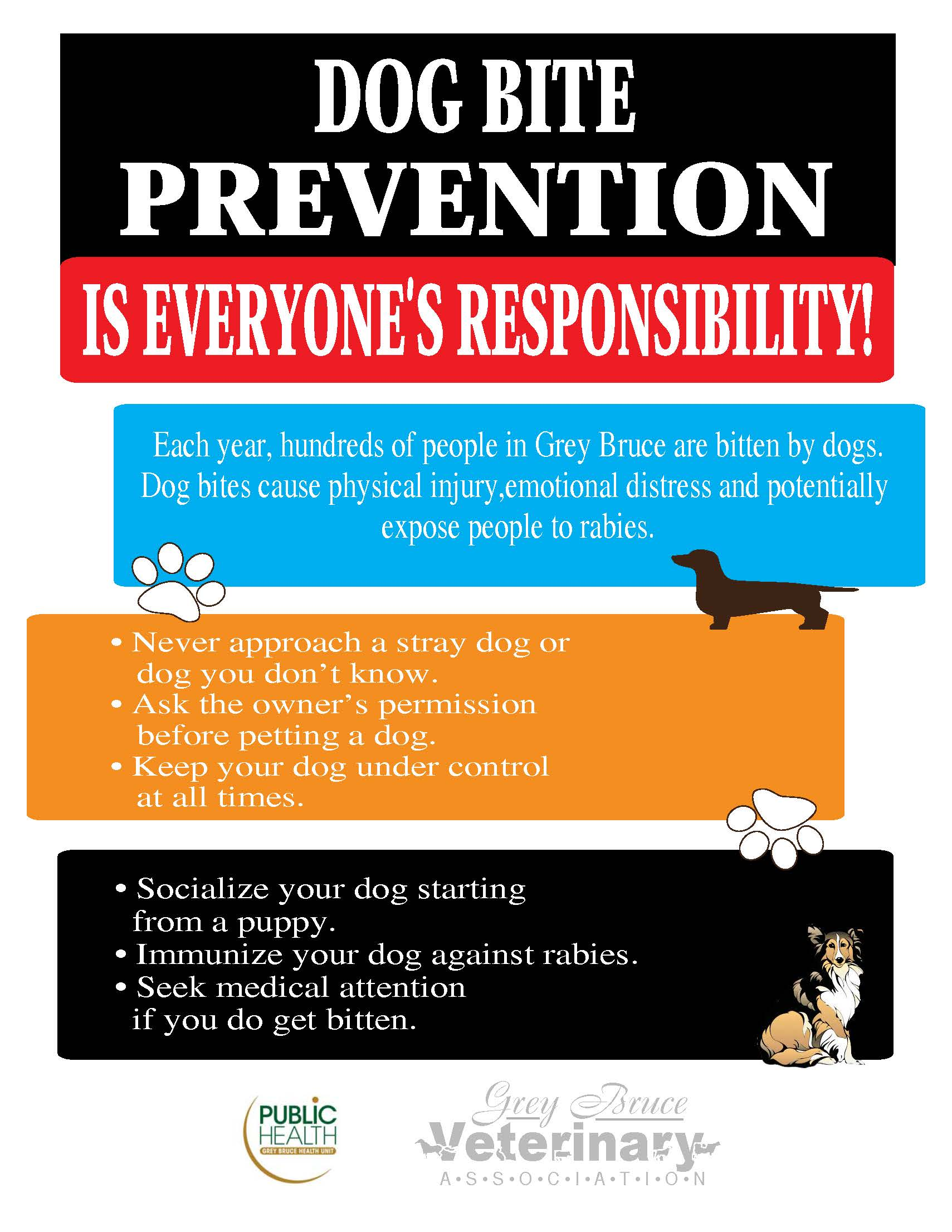 Dog Bite Prevention campaign poster