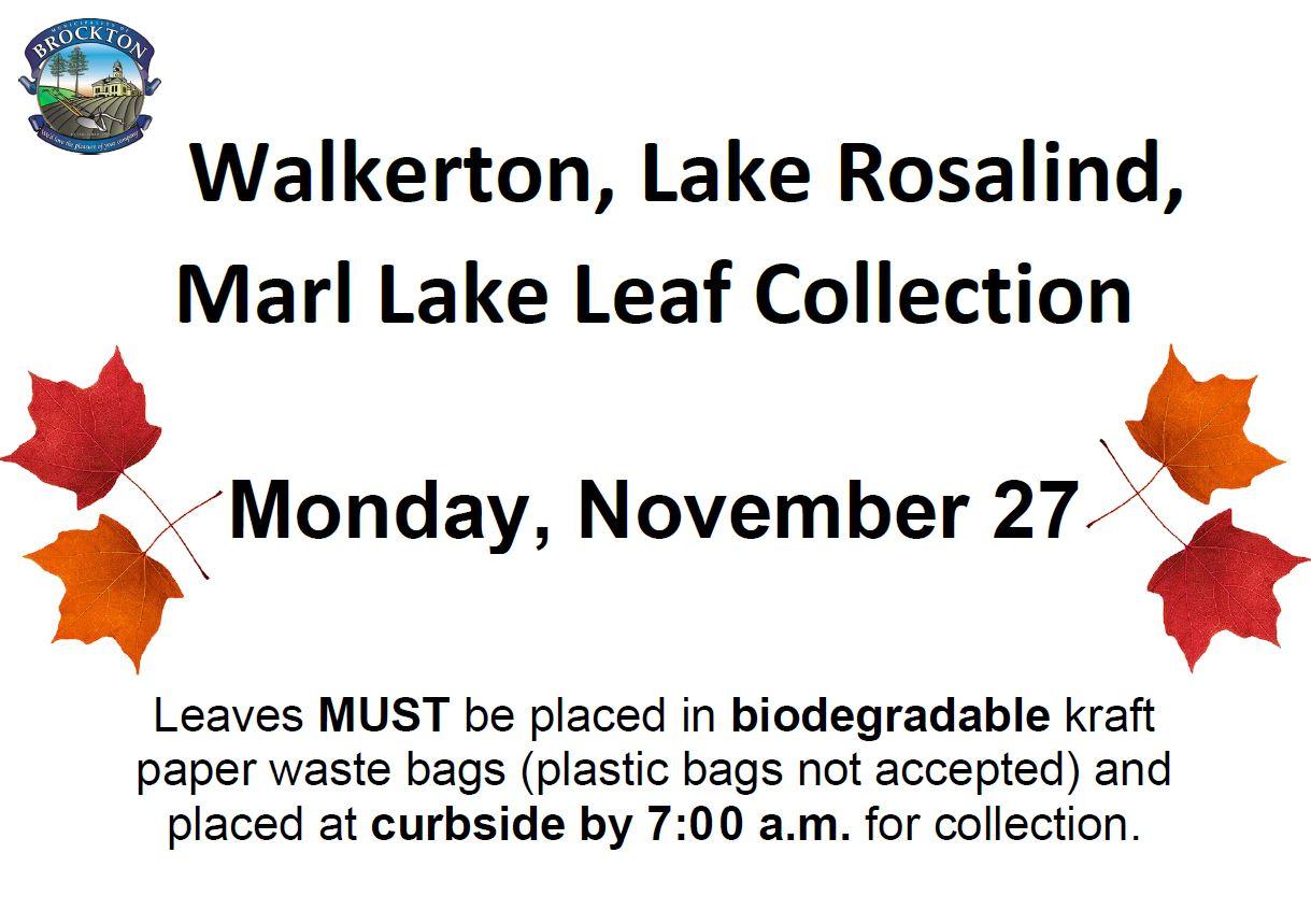 2017 Leaf Collection November 27