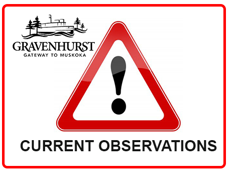 current-observations_alerts-icon