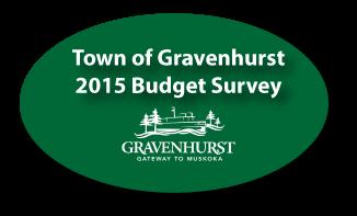 budget-survey_image