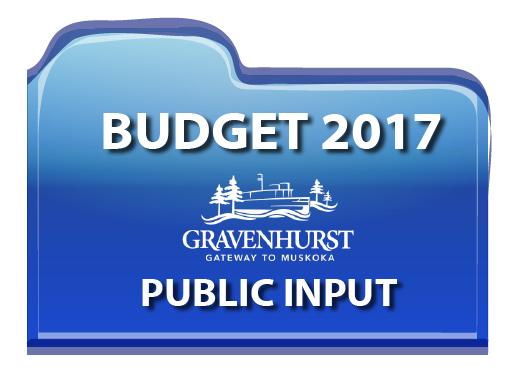 Budget-Public-Input-icon