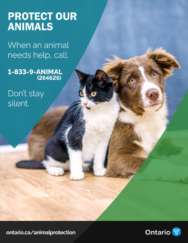 Animal Welfare Poster