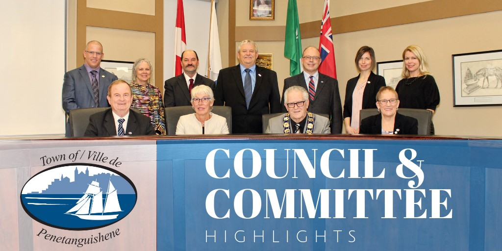 Council and committee (1)