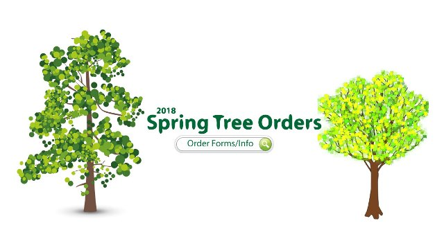 spring tree_2018 SM